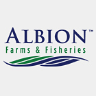 Logos-Albion